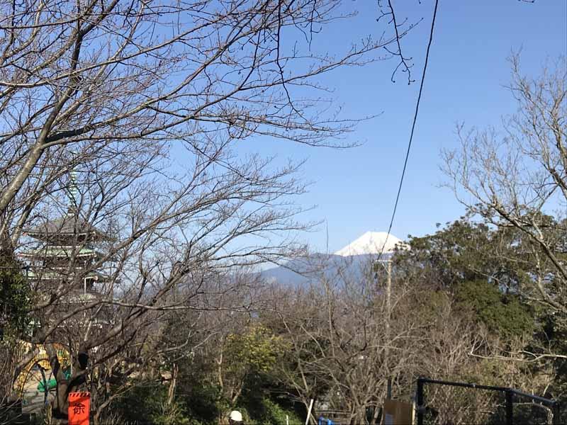 香陵台から富士山を見る